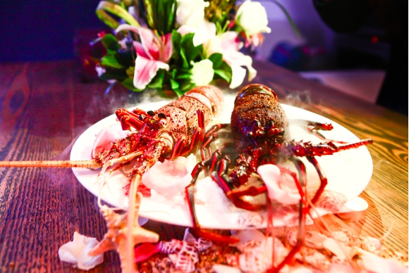 澳洲龙虾直达重庆 欧咖欲以生态让澳龙亲民